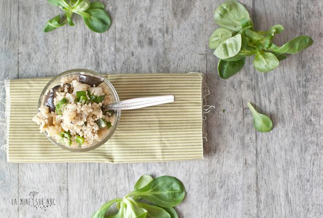 couscous-marocan-cu-vinete-prajite1
