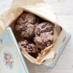 Biscuiti cu ciocolata si fulgi de ovaz (de post)