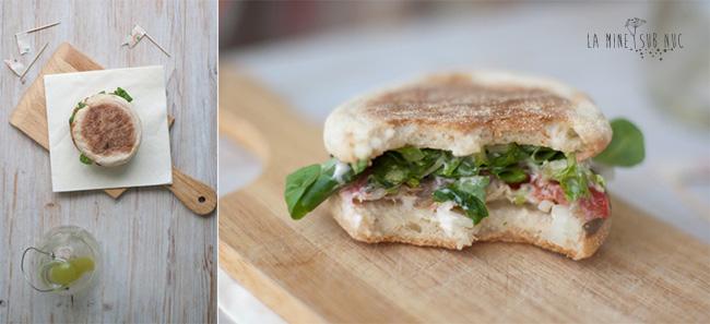 sandwich-de-vara-cu-legume-proaspete-vinete-copy