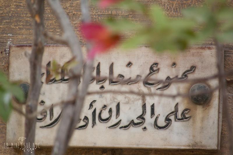 2011 Egipt-0638